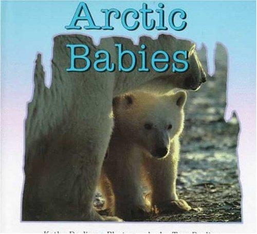 9780802784131: Arctic Babies