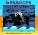 9780802784766: Seashore Babies