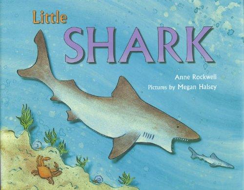 Little Shark: Anne Rockwell