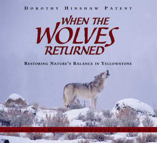 9780802796868: When the Wolves Returned: Restoring Nature's Balance in Yellowstone