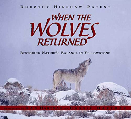 When the Wolves Returned: Restoring Nature's Balance in Yellowstone: Patent, Dorothy Hinshaw