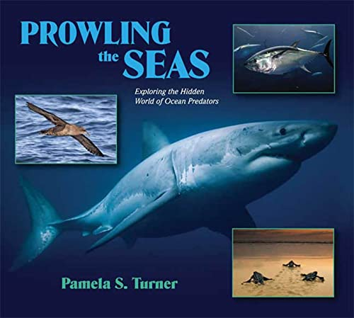 9780802797490: Prowling the Seas: Exploring the Hidden World of Ocean Predators