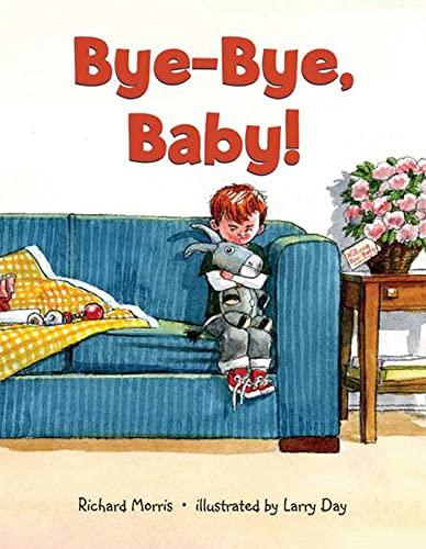 9780802797735: Bye-Bye, Baby!