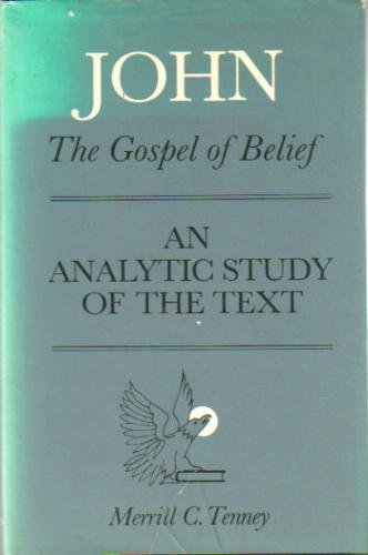 9780802832528: John: The Gospel of Belief: An Analytic Study of the Text