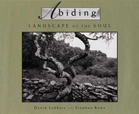 9780802838599: Abiding: Landscape of the Soul