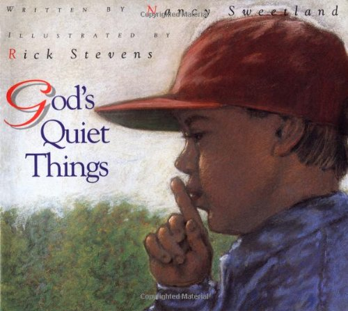 9780802851673: God's Quiet Things