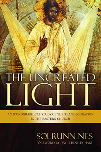 9780802871244: The Uncreated Light