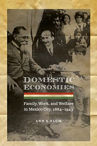 9780803213593: Domestic Economies: Family, Work, and Welfare in Mexico City, 1884-1943 (Engendering Latin America)