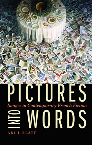 9780803238053: Pictures into Words: Images in Contemporary French Fiction (Stages)