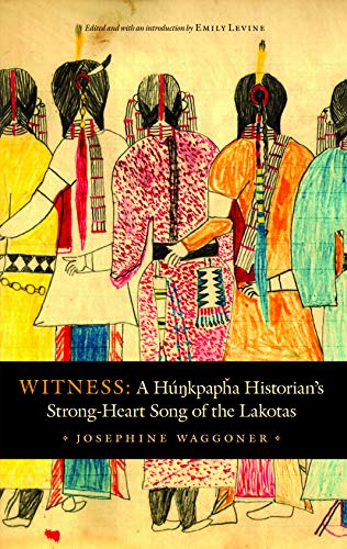 9780803245648: Witness: A Hunkpapha Historian's Strong-Heart Song of the Lakotas