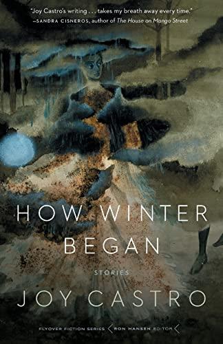 9780803276604: How Winter Began: Stories (Flyover Fiction)