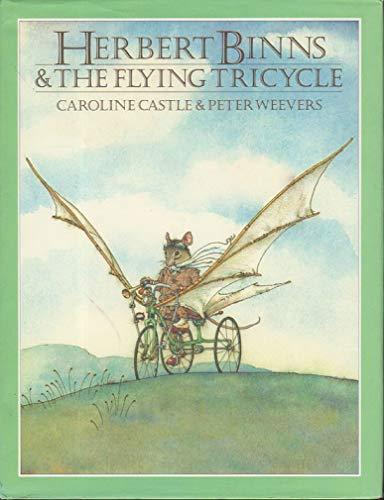 9780803700413: Castle & Weevers : Herbert Binns & the Flying Tricycle/Hbk