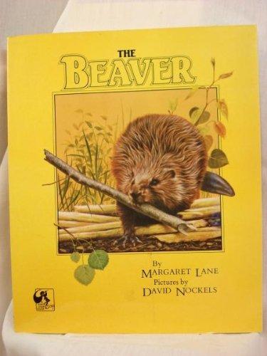9780803706378: The Beaver
