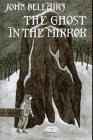 9780803713710: The Ghost in the Mirror (Lewis Barnavelt)
