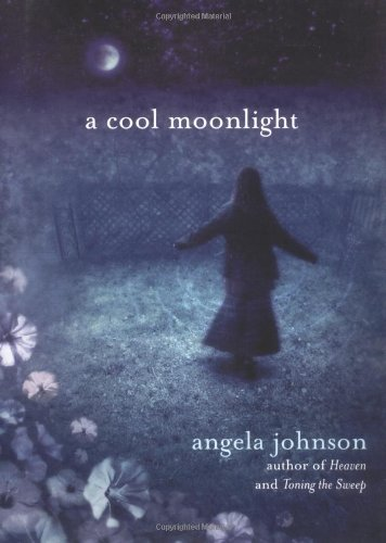 9780803728462: A Cool Moonlight