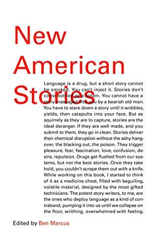9780804173544: New American Stories (Vintage Contemporaries Original)