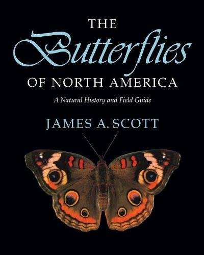 9780804720137: The Butterflies of North America: A Natural History and Field Guide