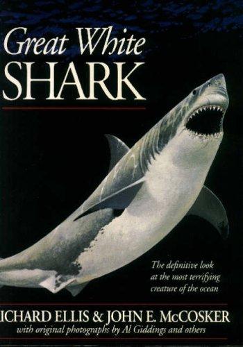 9780804725293: Great White Shark