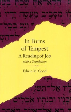 9780804733380: In Turns of Tempest: A Reading of Job with a Translation