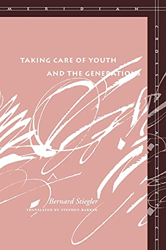 9780804762731: Taking Care of Youth and the Generations (Meridian: Crossing Aesthetics)
