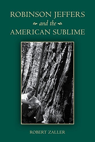 9780804775632: Robinson Jeffers and the American Sublime