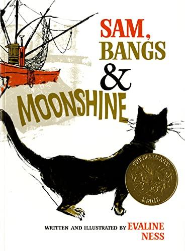 9780805003154: Sam, Bangs & Moonshine (Owlet Book)