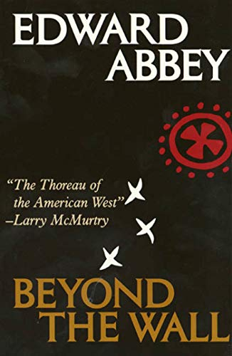9780805008203: Beyond the Wall: Essays from the outside