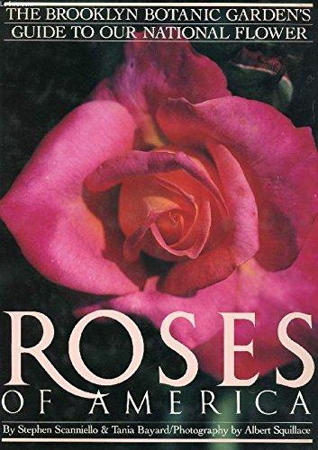 Roses of America: Scanniello, Stephen, and Tania Bayard