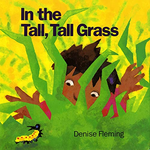 9780805016352: In the Tall, Tall Grass