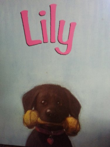 9780805026900: Lily
