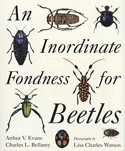 9780805037517: An Inordinate Fondness for Beetles (Henry Holt Reference Book)