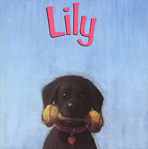 9780805054804: Lily