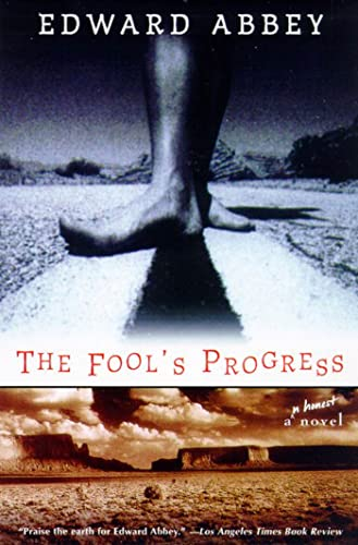9780805057911: The Fool's Progress: An Honest Novel