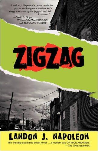 9780805060485: ZigZag: A Novel