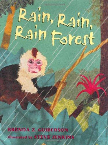 9780805065824: Rain, Rain, Rain Forest
