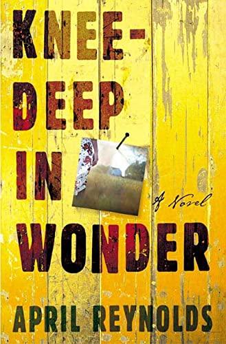 9780805073461: Knee-Deep in Wonder: A Novel