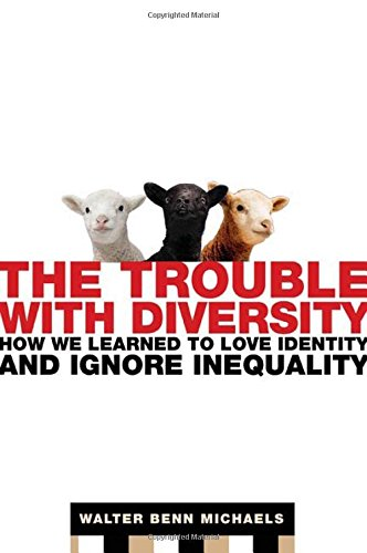 9780805078411: The Trouble with Diversity: How We Learned to Love Identity and Ignore Inequality