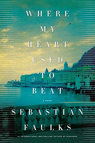 9780805097320: Where My Heart Used to Beat: A Novel