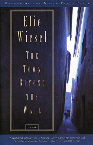 9780805210453: The Town Beyond the Wall: A Novel
