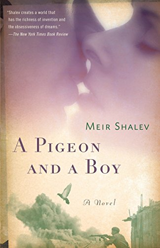 9780805212143: A Pigeon and a Boy