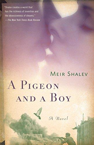 9780805212143: A Pigeon and a Boy: A Novel