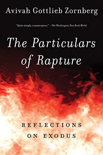 9780805212372: The Particulars of Rapture: Reflections on Exodus