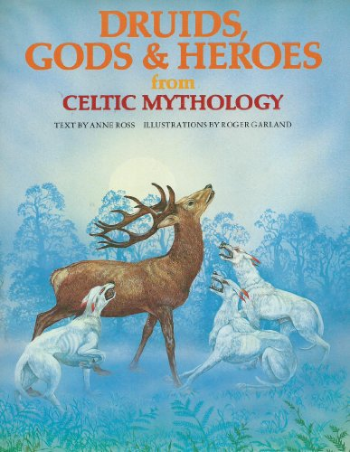 Druids, Gods & Heroes from Celtic Mythology (World Mythologies Series): Anne Ross
