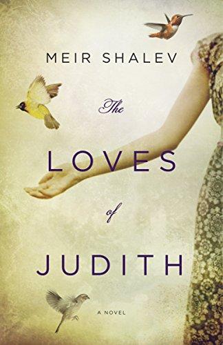 9780805242867: The Loves of Judith: A Novel
