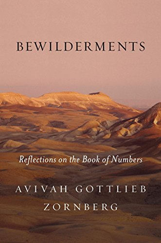 9780805243048: Bewilderments: Reflections on the Book of Numbers