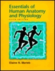 Essentials of Human Anatomy and Physiology: Elaine Nicpon, Rn