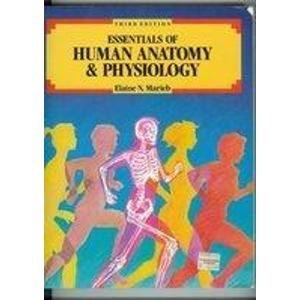 Essentials of Human Anatomy and Physiology by Marieb Elaine N - AbeBooks