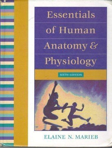 9780805349382: Essentials of Human Anatomy & Physiology