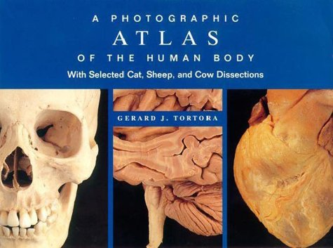 9780805351057: Photographic Atlas of the Human Body: With Selected Cat, Sheep, and Cow Dissections