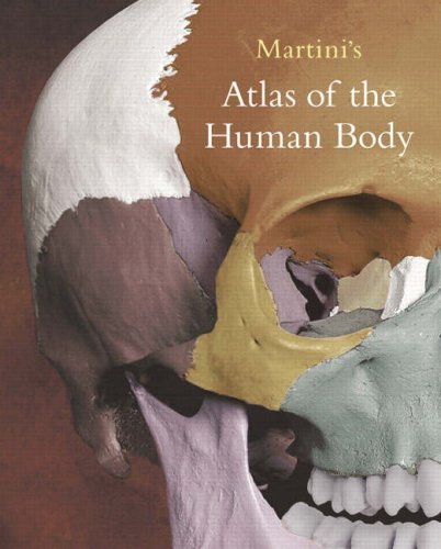Martini's Atlas Of The Human Body: Atlas: Frederic Martini, William